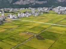 经济学家解读为何农村土地流转意愿低