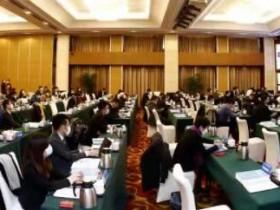 2020-2021中国新能源国际投资大会暨中国新能源海外发展联盟年会成功举办
